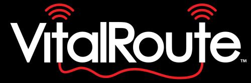 VitalRoute Logo Design